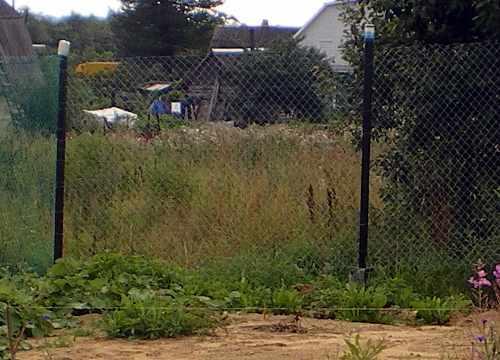 забор из пвх соединяется с забором из оцинковки