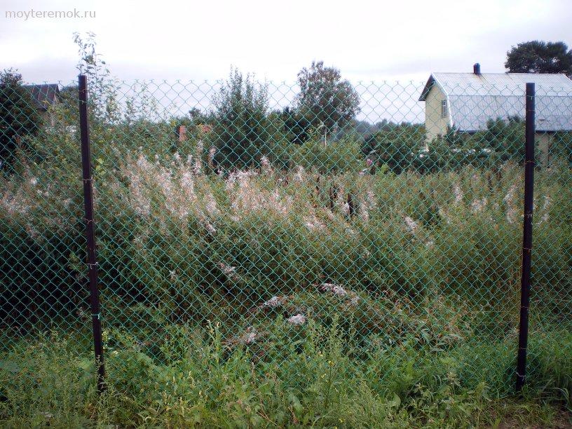 забор из сетки рабицы с пвх покрытием